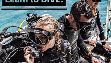 Sign up for any PADI certification and get any FREE Mask!